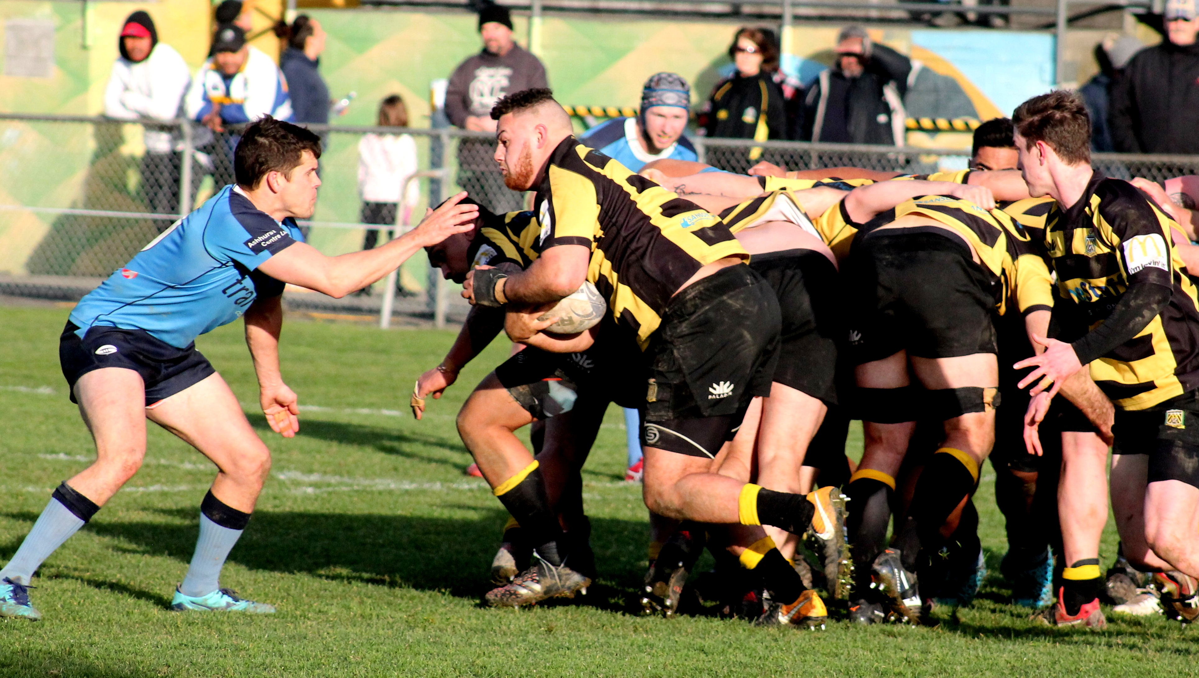 Stags and Yellows lock horns for Hankins honours